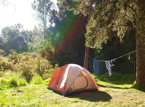 Hawaii_tent_500