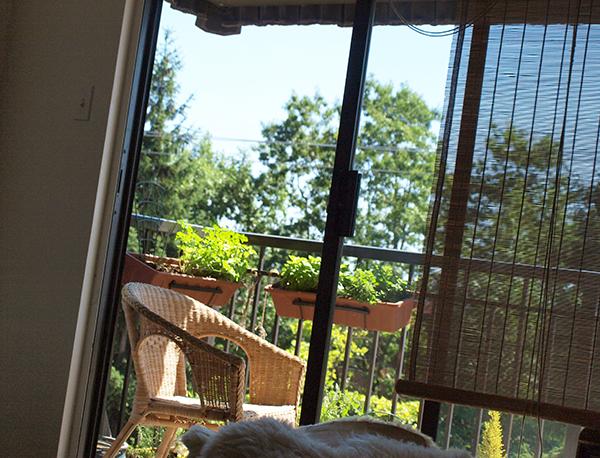 Balcony1_600px